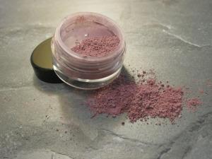 Make Up Makeup Cosmetics Eyeshadow Powder Blush