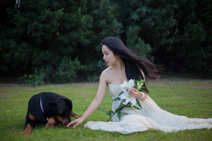 Dog Girls Wedding Dresses Lily Lawn Rottweiler